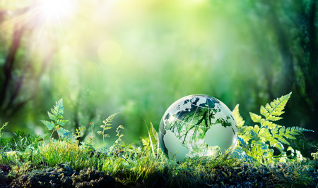 Foto de Globe On Moss In Forest - Environmental Concept - Imagen libre de derechos