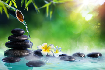 Plumeria Flowers In Japanese Fountain With Stones And Bamboo Massage - Zen Garden