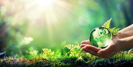 Foto de Hands Holding Globe Glass In Green Forest - Environment Concept - Imagen libre de derechos