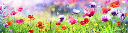 Photo pour Poppies In The Sunny Field With Abstract Bokeh - image libre de droit
