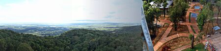 Panoramic view of the jungle
