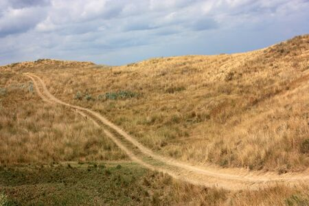 winding road in the prairie