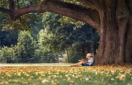 Little boy reading a book under big linden treeの写真素材