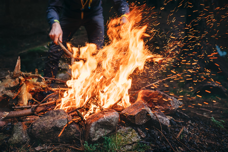 Man makes bonfire in forest