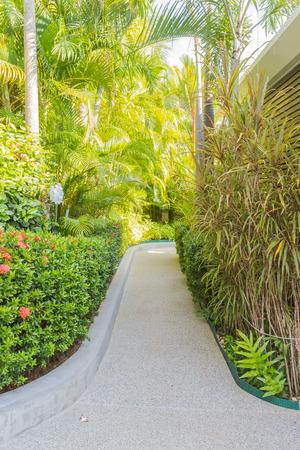 Walk way in garden leading to entrance door