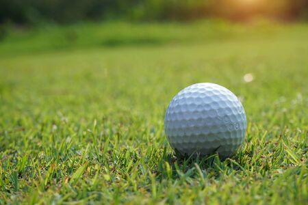 Photo pour Golf ball on the green with warm tone and sunset. Golf ball on Green field golf course in morning time with soft sunlight.                                  - image libre de droit