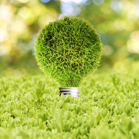 Grass Light bulb on green grass  Concept of Eco technology