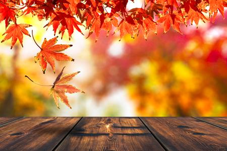 Photo for Autumn Leaf Falling On The Wood Table. Autumn Season - Royalty Free Image
