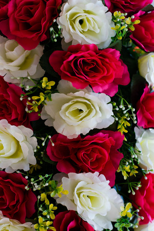 Rose three color on top made by nylon