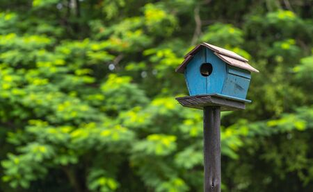 Photo pour Beautiful bird house stands in the park, blurred trees background. - image libre de droit