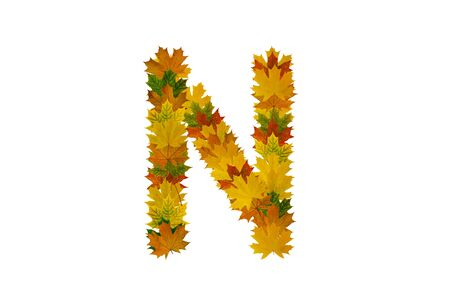 Letter N from autumn maple leaves. Alphabet from green, yellow and orange leaves.