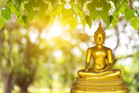 Foto de Buddha statue, blurred background with blurred background - Imagen libre de derechos