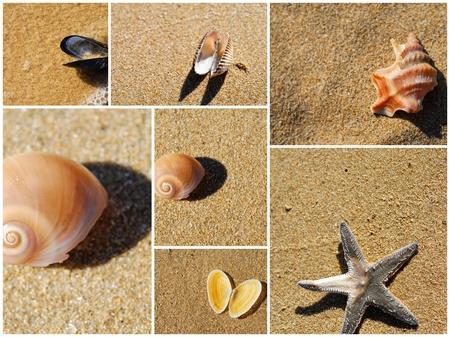 Foto per collage mare - Immagine Royalty Free