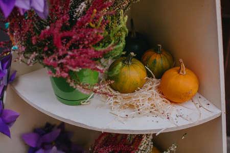 Pumpkins and autumn flowers, stylish festive decor of city street. Happy Thanksgiving. Halloween street decor