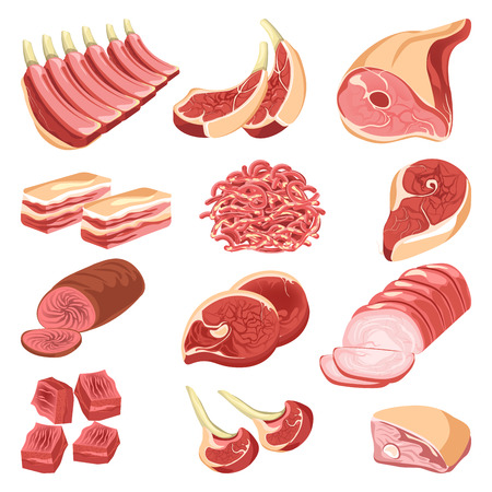 Foto de Fresh meat cuts colorful vector collection in flat design on white. Assortment poster of raw and cooked food of animal origin, pieces for barbecue, forcemeat pile, smoked or baked beef or pork. - Imagen libre de derechos