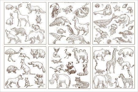 Illustration pour Wild animals species sketch icons birds mammals and amphibians - image libre de droit