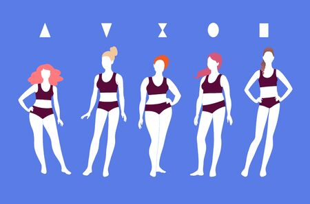 Illustration for Vector illustrations of female body types - Royalty Free Image