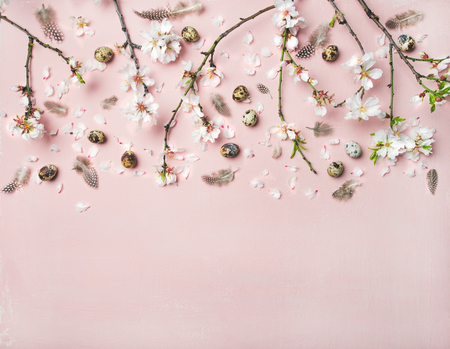 Easter holiday background. Flat-lay of tender Spring almond blossom flowers on branches, feathers and quail eggs over light pink background, top view, copy space. Greeting card concept