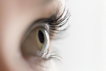 Foto de Close up of a green eye looking aside - Imagen libre de derechos