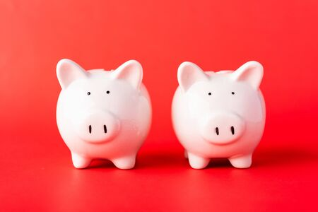 Photo pour International Friendship Day, Front two small white fat piggy bank, studio shot isolated on red background and copy space for use, Finance, deposit saving money concept - image libre de droit