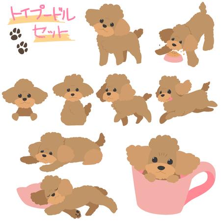 Ilustración de Poodle set - Imagen libre de derechos