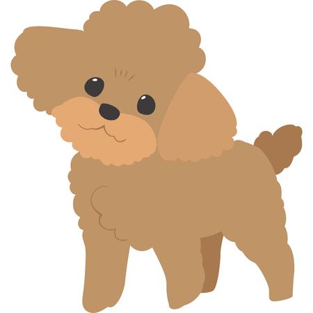 Ilustración de Camera dog (toy poodle) - Imagen libre de derechos