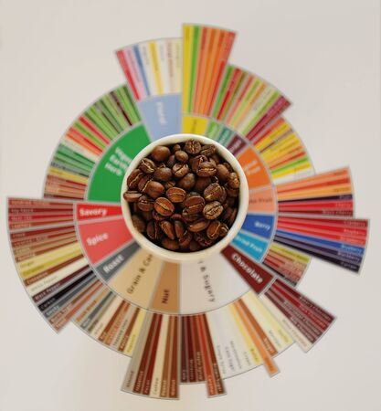 Photo pour Specialty coffee concept. Roasted coffee beans in white cup on taster's flavor wheel. Top view. Third wave coffee - image libre de droit