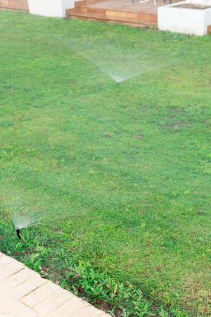 Foto de Sprinkler in garden watering the lawn. Automatic watering lawns concept. - Imagen libre de derechos