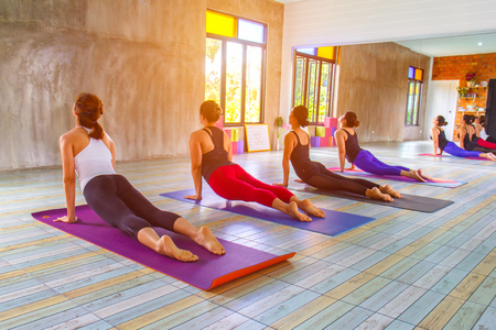 Fitness asian female group doing warm up yoga pose in row at the yoga class. selective focus