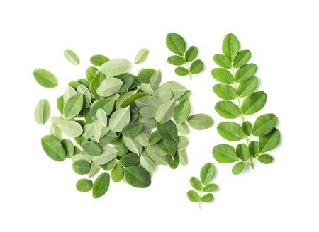 Photo for Moringa leaves on white background. top view - Royalty Free Image