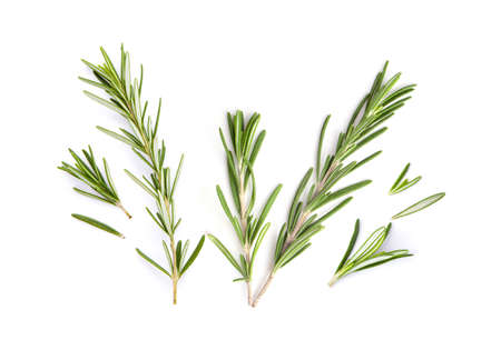 Photo pour fresh rosemary isolated on white background. Top view - image libre de droit