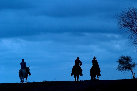 Cowboys ride their horses silhouetted against a blue sky