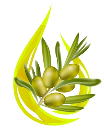 Olive oil. Stylized drop of oil, and olive branch inside. Vector illustration.