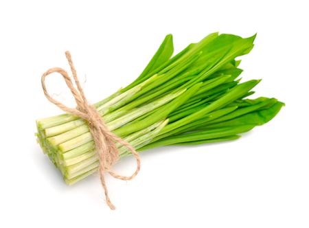 Allium ursinum – known as ramsons, buckrams, wild garlic, broad-leaved garlic, wood garlic, bear leek, or bear's garlic. Isolated.