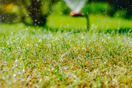 Photo pour Automatic Garden Lawn sprinkler watering grass. - image libre de droit