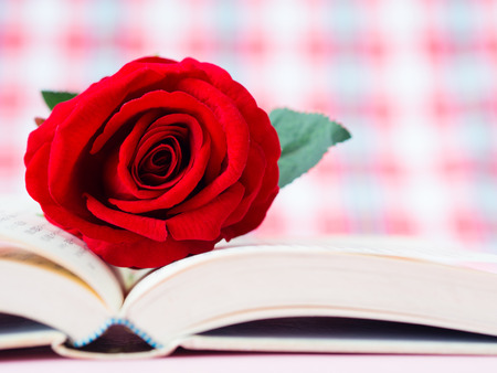 Red rose on open book. LOVE and valentine's day concept.