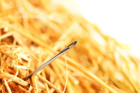 Foto de Needle in a haystack . - Imagen libre de derechos
