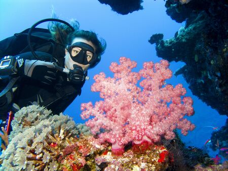 A diver gets in close to a beautiful soft coral
