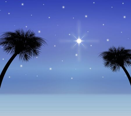 silhouette of desert sky with bright star
