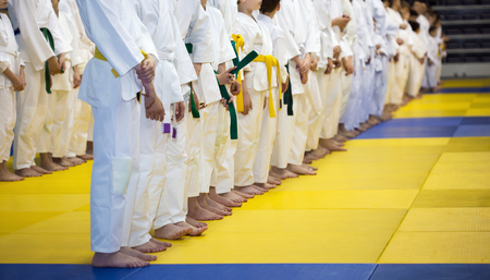 Photo pour Group of children in kimono standing on tatami on martial arts training seminar - image libre de droit