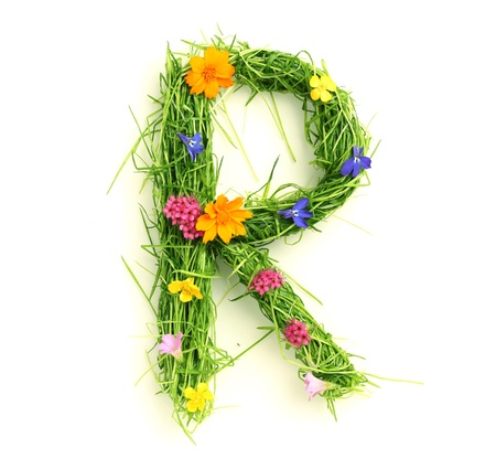Letters made of flowers and grass isolated on white