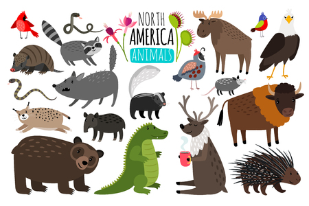 Illustration pour Animal graphics of North America, american bison and skunk, cute moose and lynx. - image libre de droit