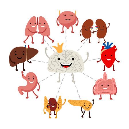 Illustration pour Brain controls internal human organs vector concept. Illustration of brain organ, internal control healthcare - image libre de droit