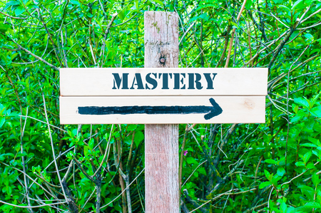 MASTERY written on Directional wooden sign with arrow pointing to the right against green leaves background. Concept image with available copy space