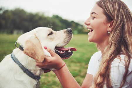 Photo for Frame with a beautiful girl with a beautiful dog in a park on green grass - Royalty Free Image