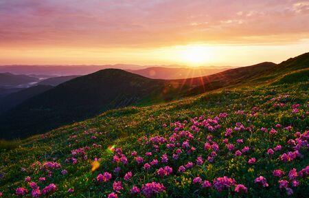Photo pour Cloudly sky. Majestic Carpathian mountains. Beautiful landscape. Breathtaking view. - image libre de droit