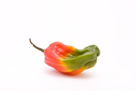 Scotch Bonnet chilli in the colours of the Jamaican flag from low viewpoint against white background.