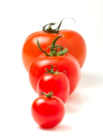 Photo for Tomato line up of four different varieties isolated on white. - Royalty Free Image