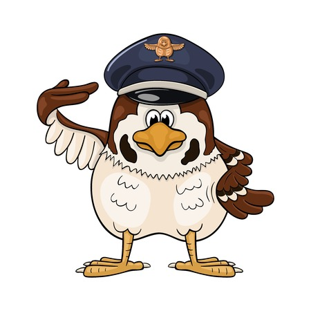 Funny cartoon sparrow in service cap with pilot badge makes a salute by rising the right wing to his cap.