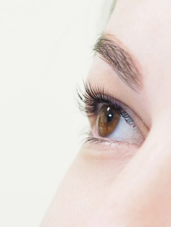 Photo pour Cosmetic procedure for the care of eyelashes. The result of dyeing, waving and laminating eyelashes. - image libre de droit